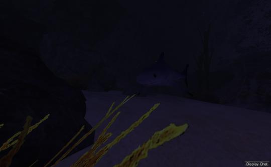Evil Sharky!